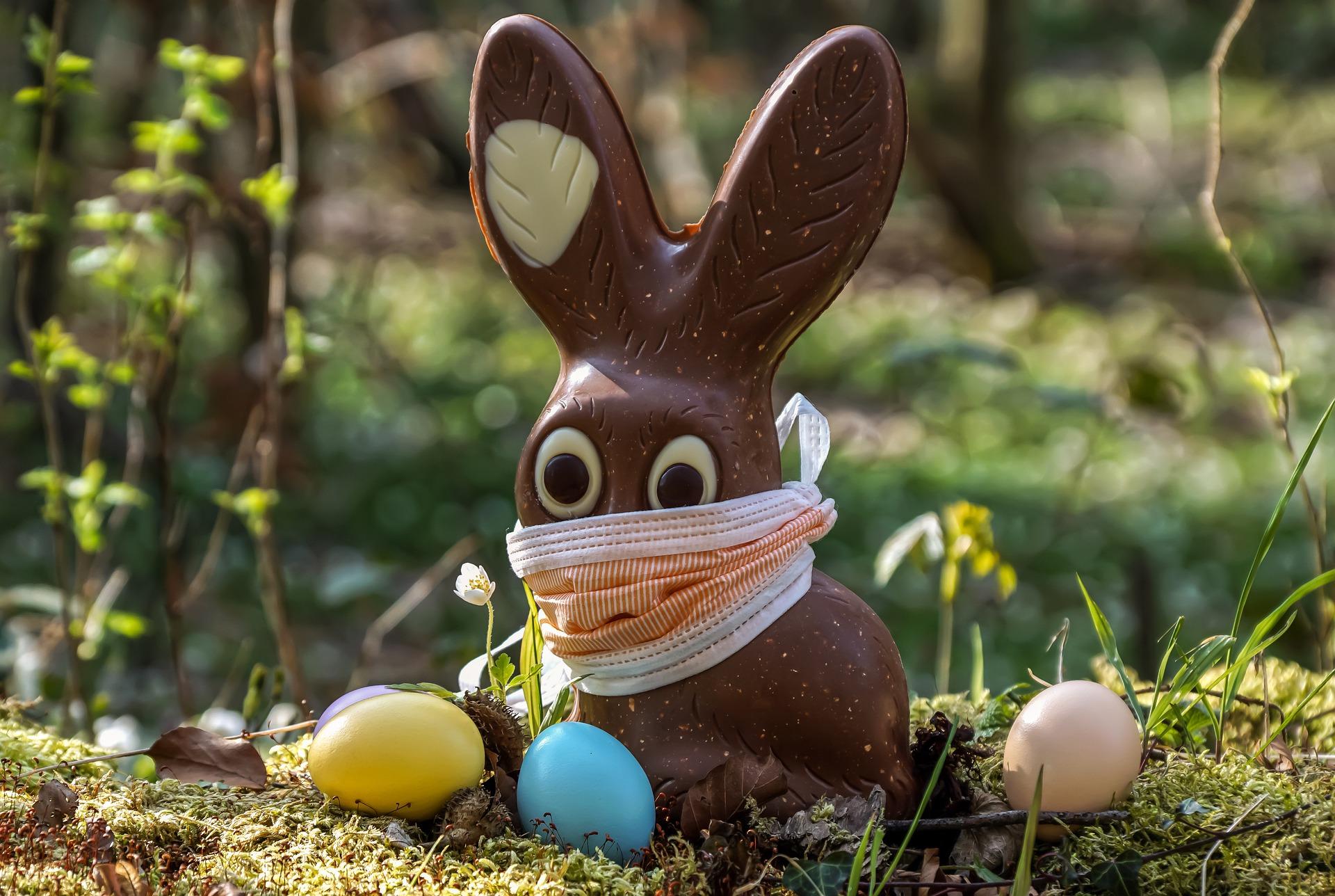 coniglio di cioccolato che non prenderà il covid