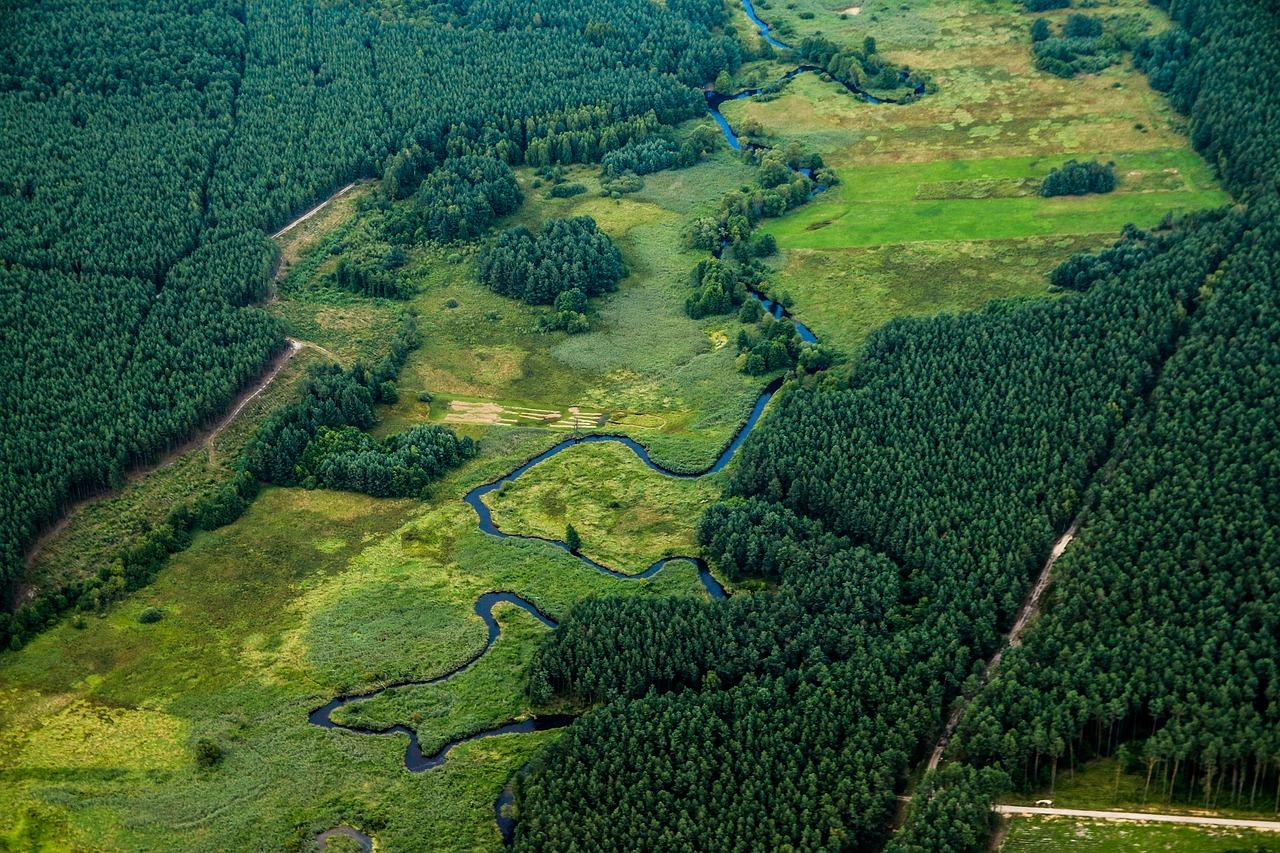 prati e boschi con un fiume visti dall'alto