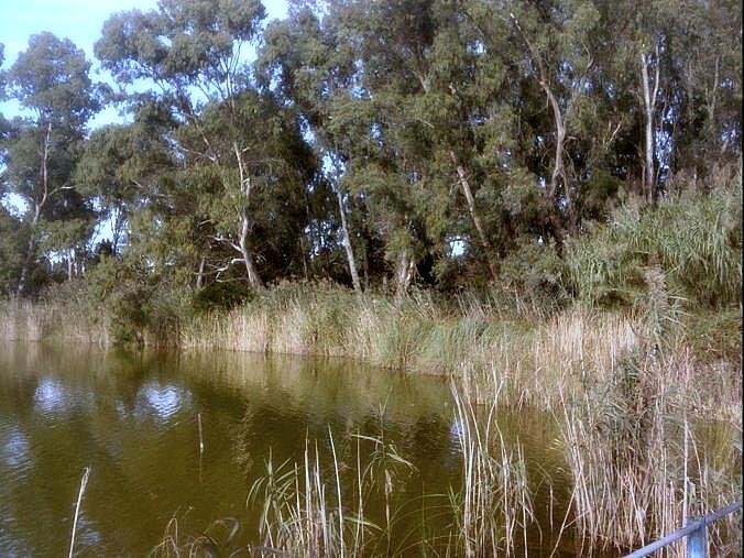Fontanelle Otranto dettaglio dei laghi Alimini